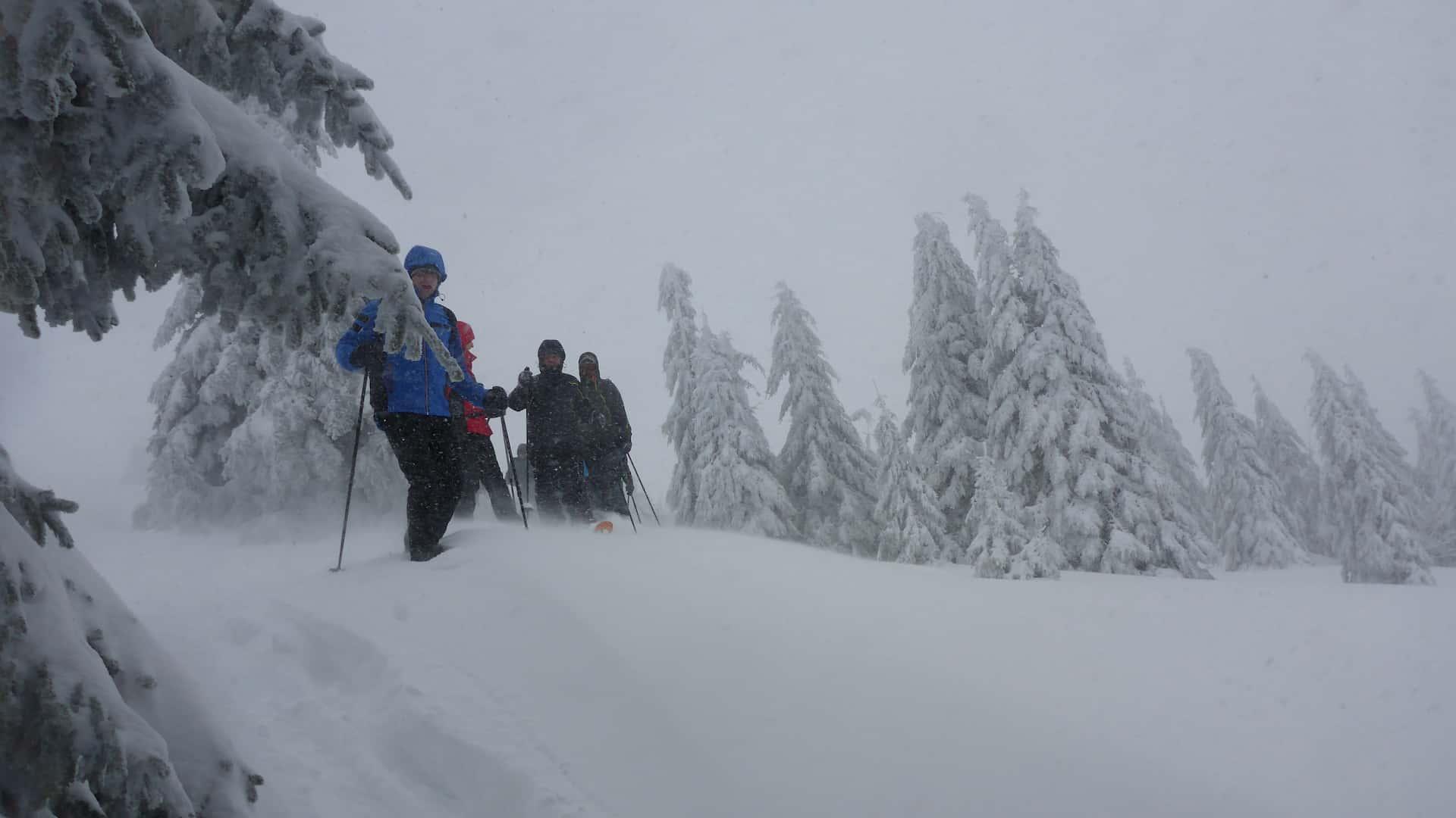 Schneeschuhwandern Hinterzarten