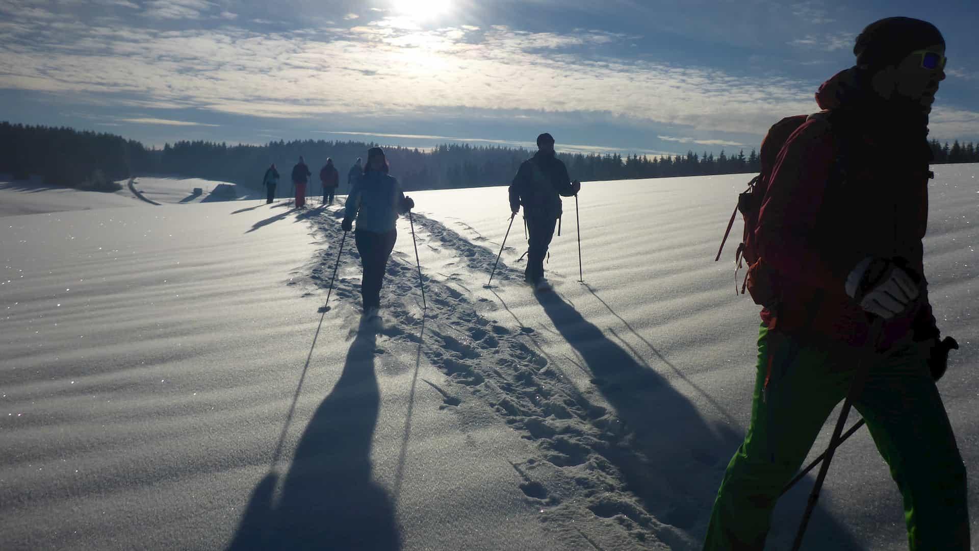 Schneeschuhwandern Schönwald im Schwarzwald