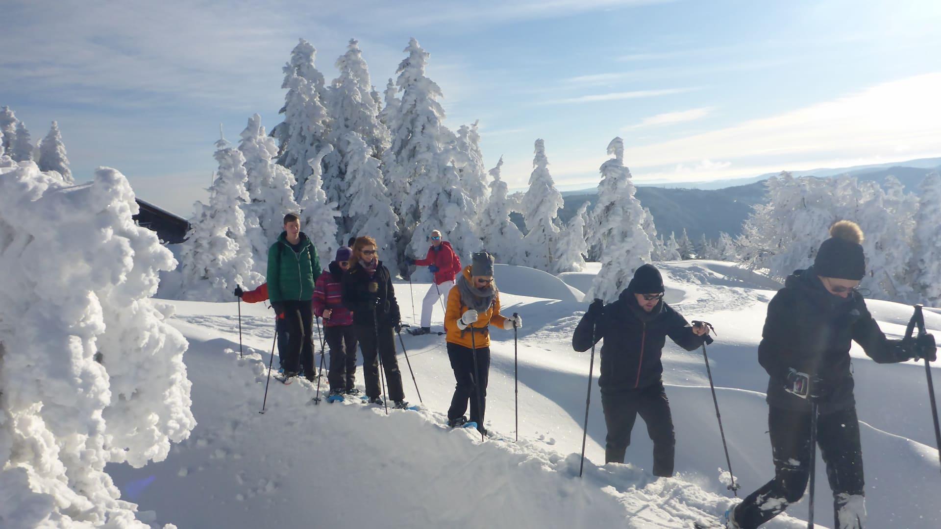 Schneeschuhwandern Feldberg