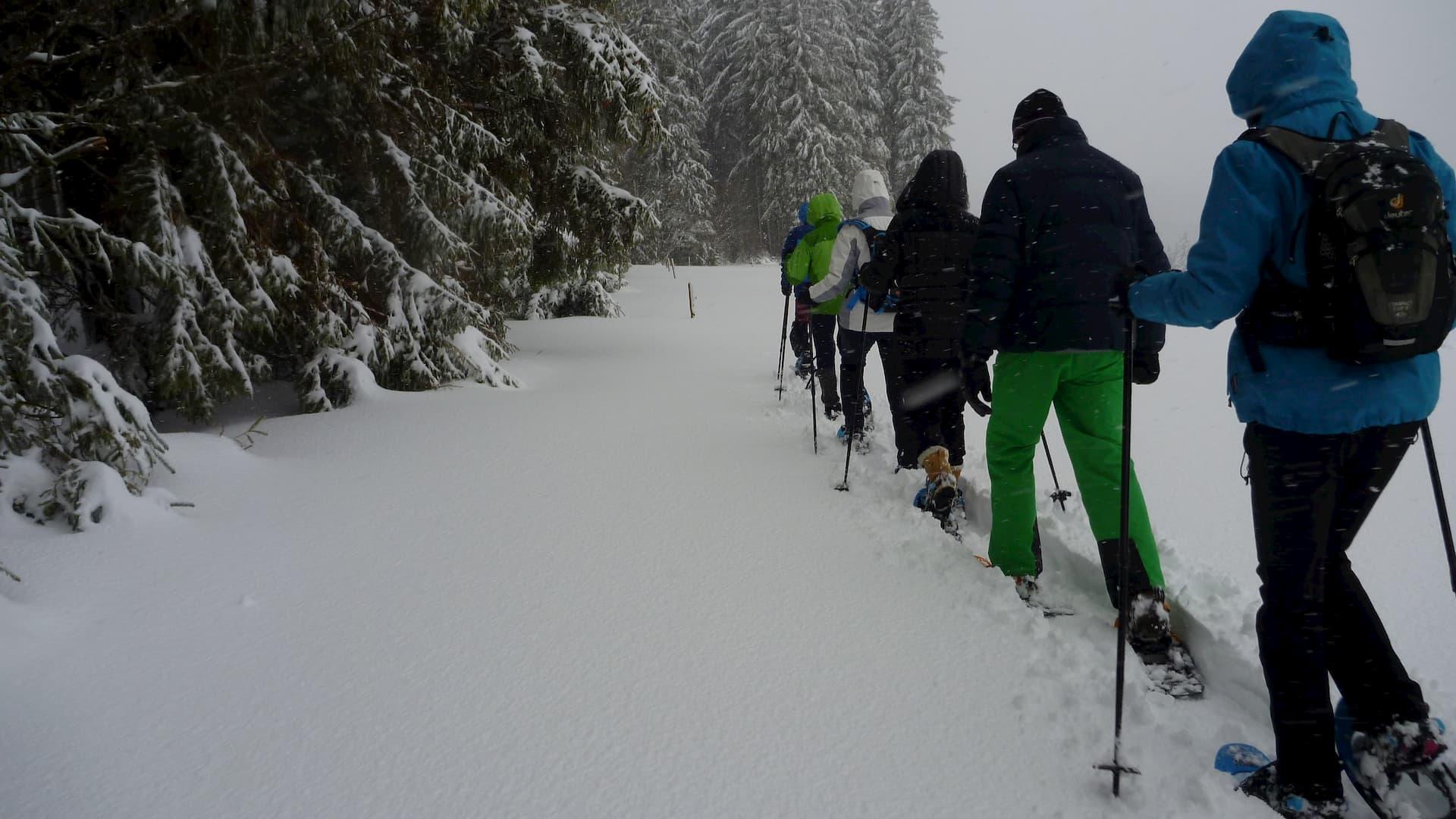 Schneeschuhwandern Schönwald