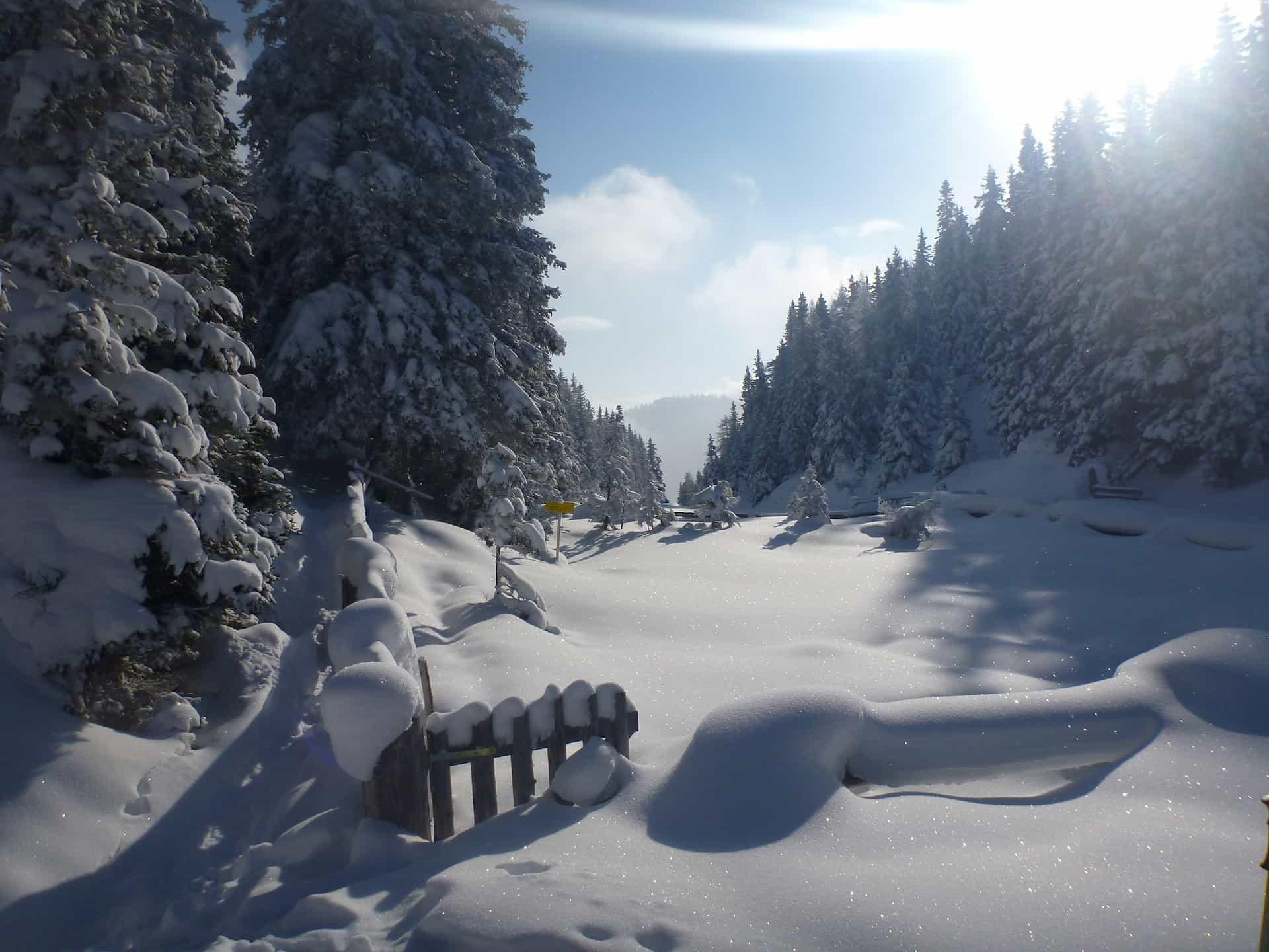 Schneeschuhverleih Schwarzwald